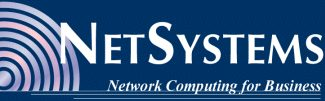 NetSystems - Network Computing for Business